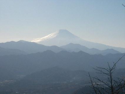 Oogaito_sasaone193