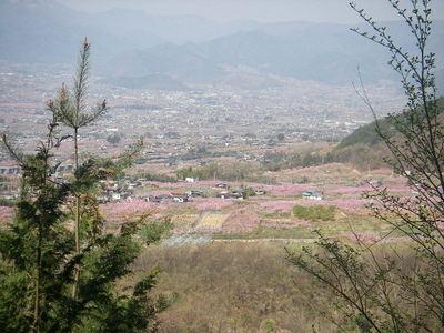 Momonosato82