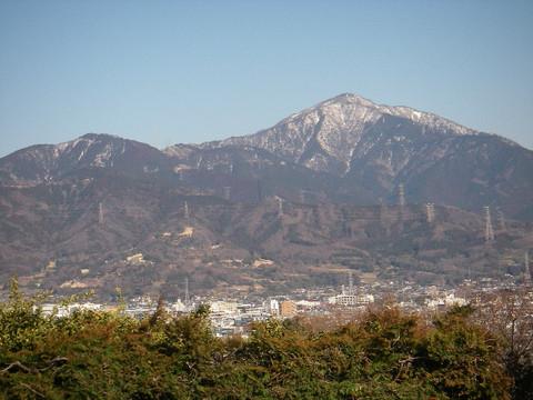 Shibusawa_kyuryo45_2