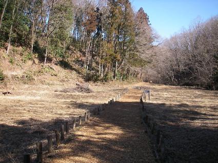 Tenran_tonosu_tenkaku61
