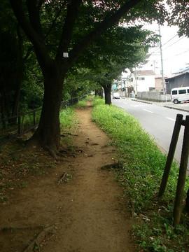 Tamagawa_josui_b0086
