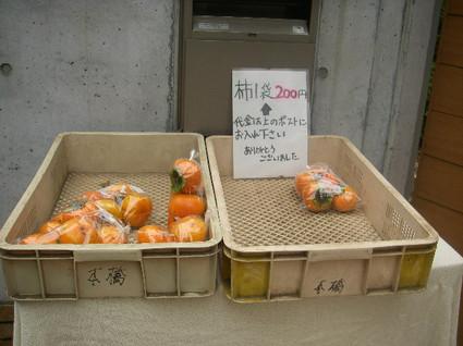 Tamagawa_josui_b0094
