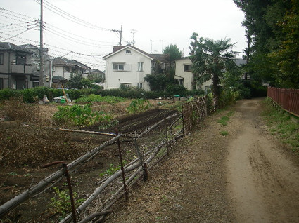 Tamagawa_josui_b0324