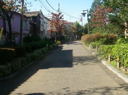 Tamagawa_josui_c0123
