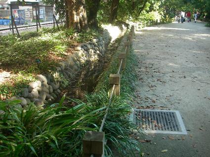 Tamagawa_josui_c0209