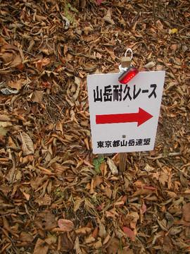 Tsurutouge_tomin_no_mori0254