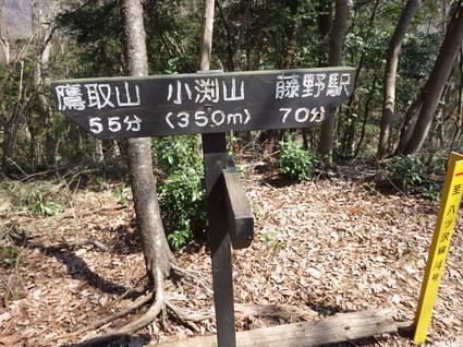 Takatoriyama_obuchiyama0111