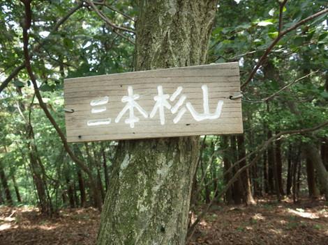 Sanbonsugi_senzoku0036