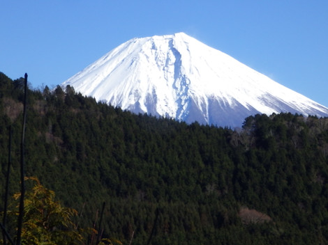 Yamanashi100mitsuishi0107