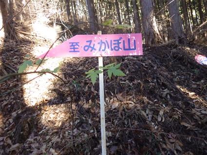 Mikabo_meisou0093