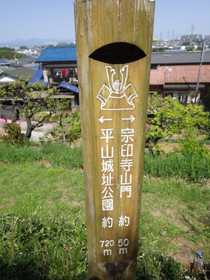 Hirayama_yaen0018