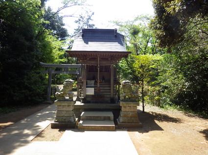 Hirayama_yaen0054