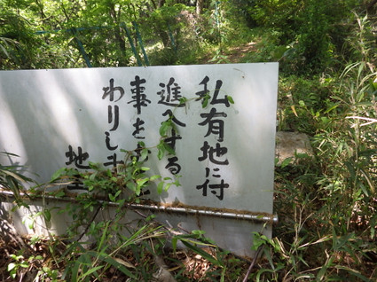 Hirayama_yaen0113