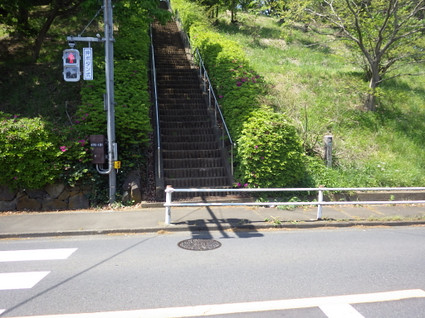 Hirayama_yaen0133