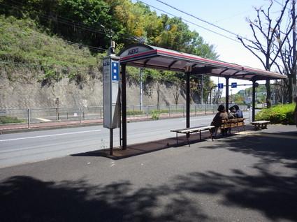 Hirayama_yaen0206