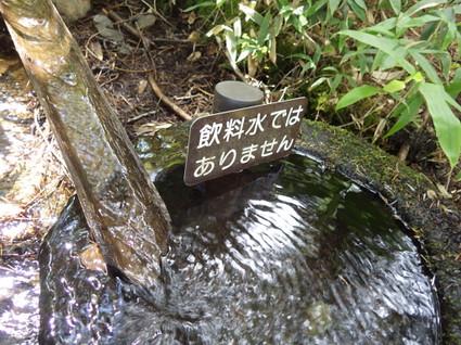 Nyugasayama0183