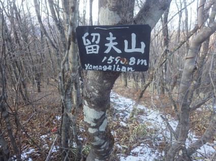 Hanamagariyama0145