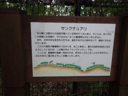 Kinunomichi0178